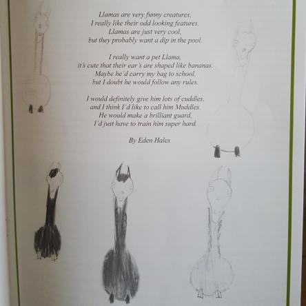 llama poem